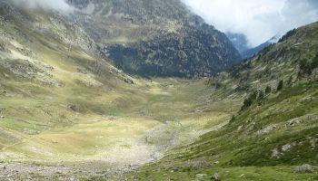 Enchère des pacage de la Montagne du Marcadal